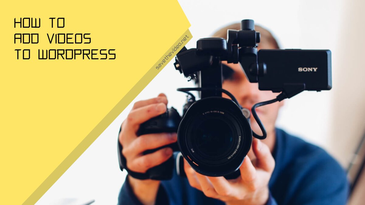 How to add videos to WordPress