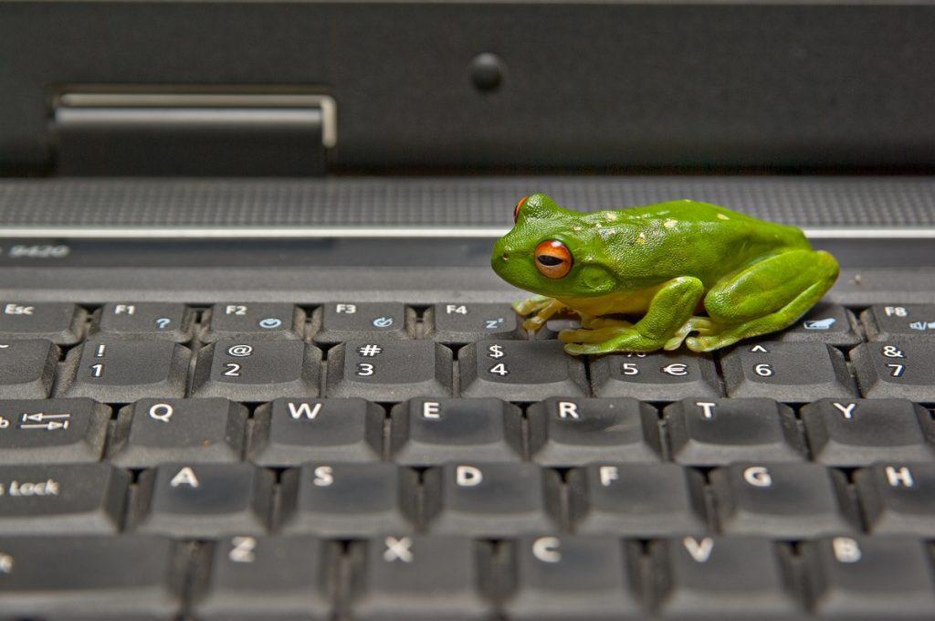 Leap Frog web design